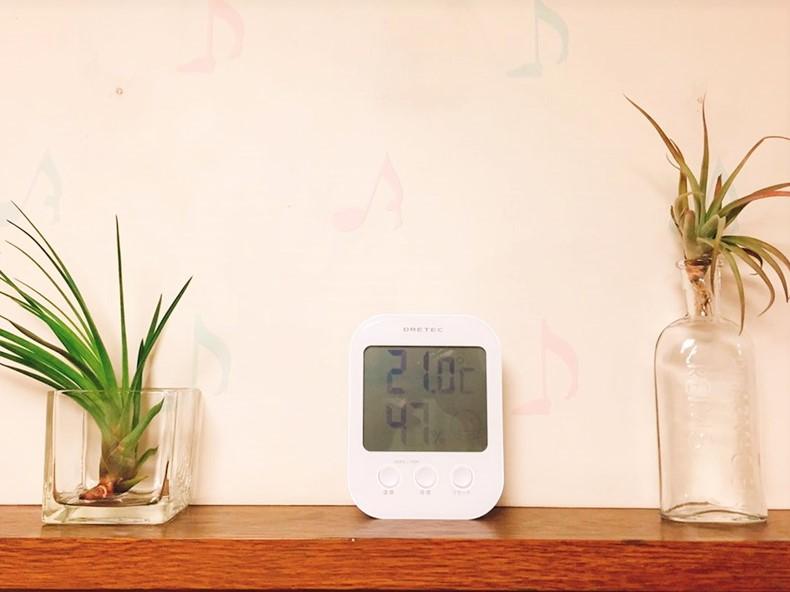 デジタル温湿度計とエアプランツ