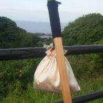 四国88箇所巡礼 女一人歩き遍路の旅 12日目・愛媛県に突入