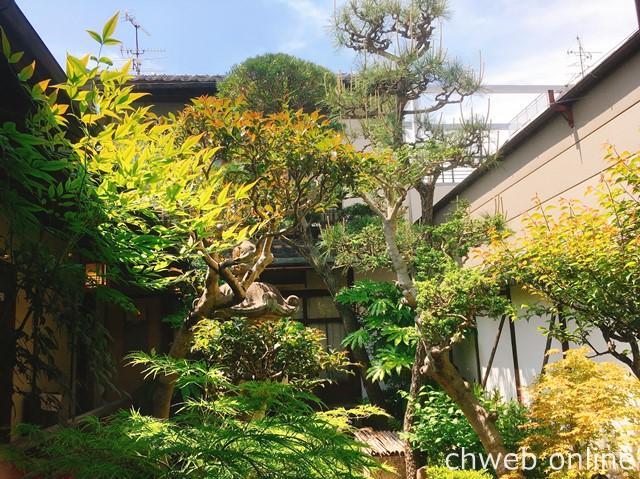 中西与三郎 日本庭園 新緑