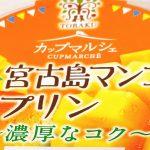 トーラク「宮古島マンゴーのプリン」を食べてみた!